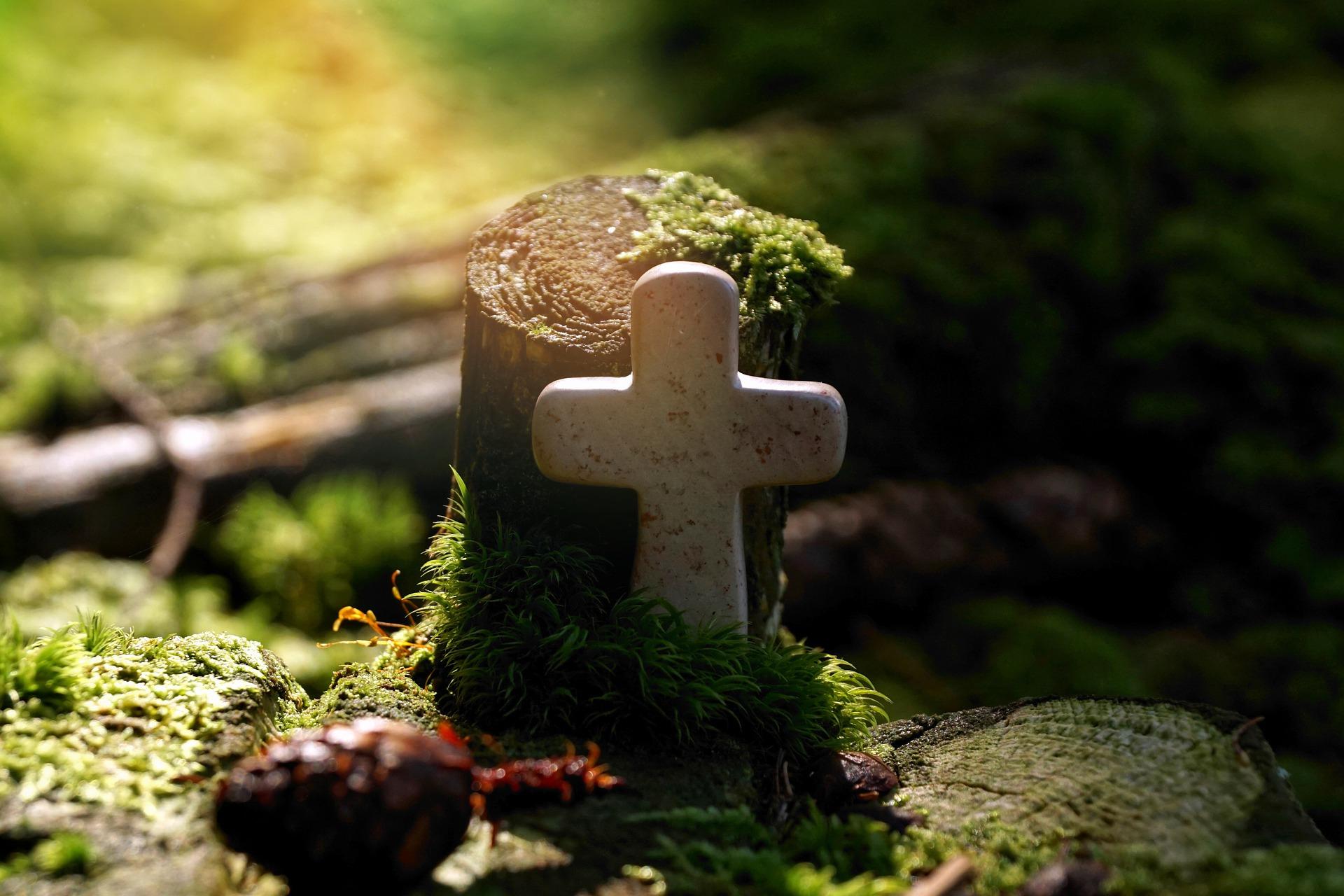 Gute Besserung mit Segen aus der Bibel